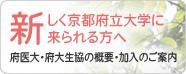 110711_newcomer_kpu.jpg